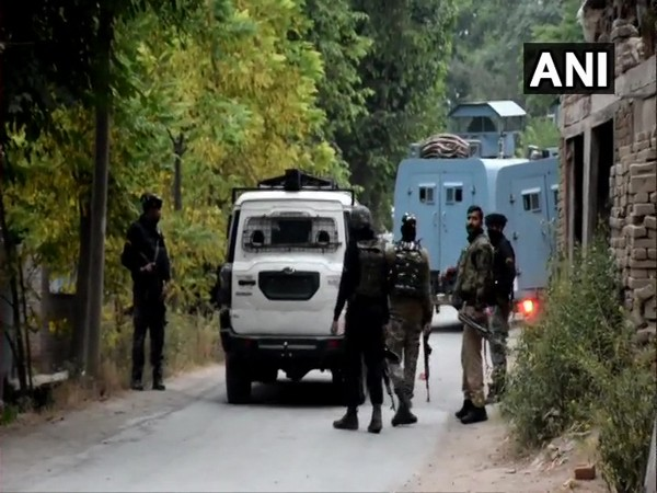 5 terrorists killed by security forces in J-K in last 24 hours