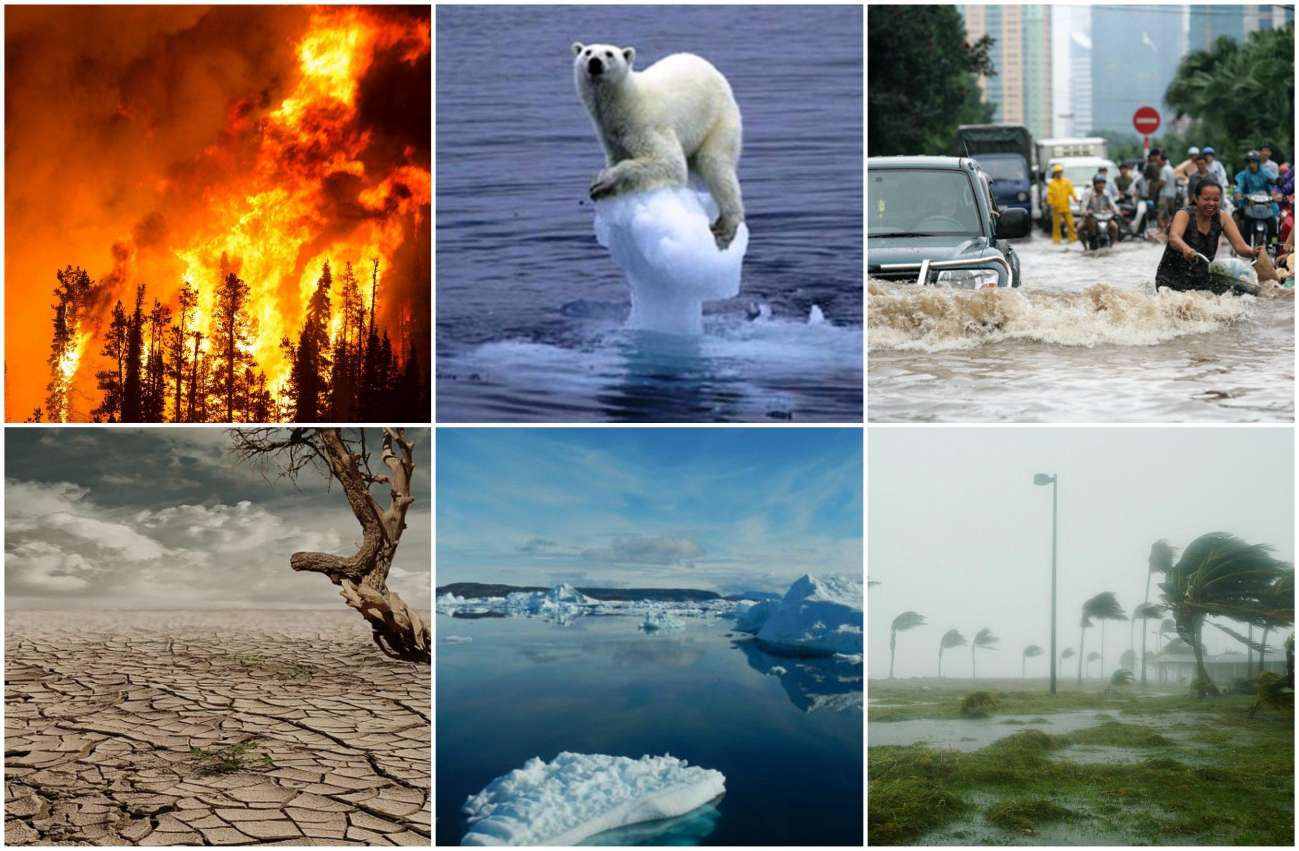 आईपीसीसी रिपोर्ट विश्व को जलवायु आपदा की याद दिलाती है