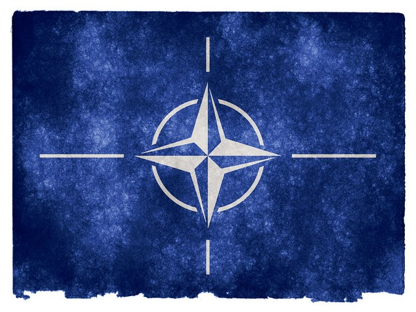 NATO suspends all support to Afghanistan, calls for end to violence