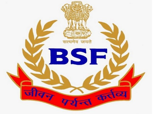 Flying object fired at by BSF in J-K's Arnia