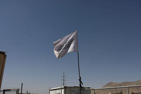Activists urge UN to investigate alleged Taliban crimes